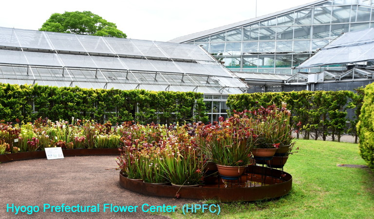 Hyogo Pref. Flower Center